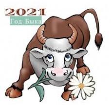 Въл 2021 година - диамантен гоблен 10117