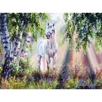 Комплект за рисуване по номера. Бял кон – GX 4666