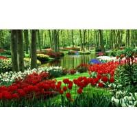 PZ 70405 Пролет в гората- диамантен гоблен