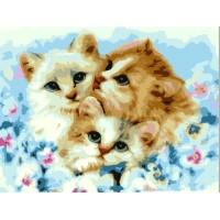 Комплект за рисуване по номера. Сладки котенца – EX 5232