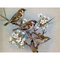 GI 304064  Диамантен гоблен -Птици