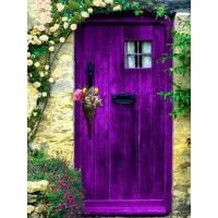 Лилава врата - Диамантен гоблен FL 34080
