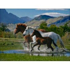 GI 304035 Диамантен гоблен - Планински коне