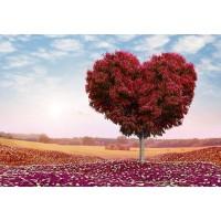 PZ 303064 Диамантен гоблен - Дърво-Сърце