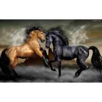 GI 304089  Диамантен гоблен -Красиви коне