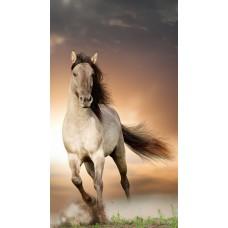 GI 304090  Диамантен гоблен -Бял кон