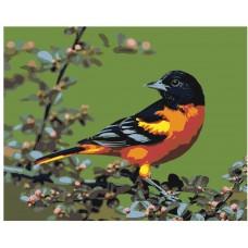 Картина по номера - Птица на клон Z-293
