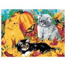 Картина по номера - Котки ZE-3104
