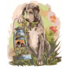 Картина по номера -  Куче  ZG-0081