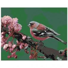 Картина по номера -  Птица  ZG-0071