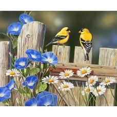 Картина по номера -  Жълти птици ZP-089