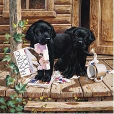Картина по номера - Две кучета ZP-082