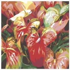 Картина по номера - Червени цветя ZP-010
