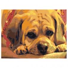 GI 304109 Диамантен гоблен - Куче
