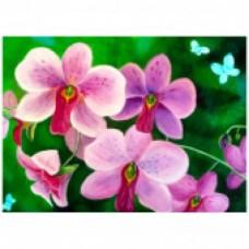 Комплект за рисуване по номера. Розови цветя – GX 7263