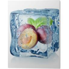 RZ 303024 Диамантен гоблен -  Слива и лед